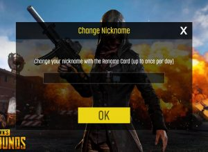 Change Your Pubg Name
